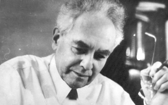 Учение Александра Романовича Лурия о трех функциональных блоках мозга