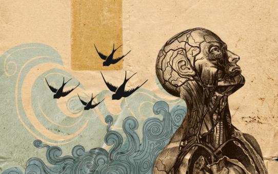 В поисках смысла жизни... Экзистенциальная психология
